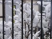 2012229積雪10センチA
