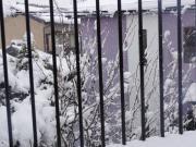 2012229積雪10センチB
