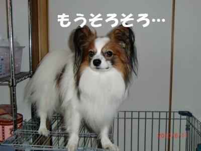 004_convert_20100614205458.jpg