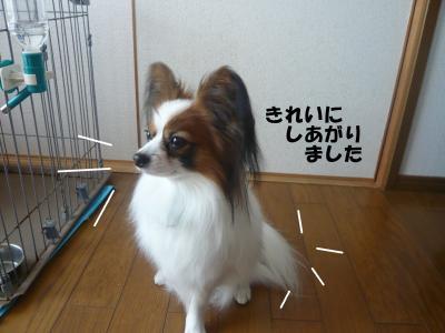 011_convert_20100317224036.jpg
