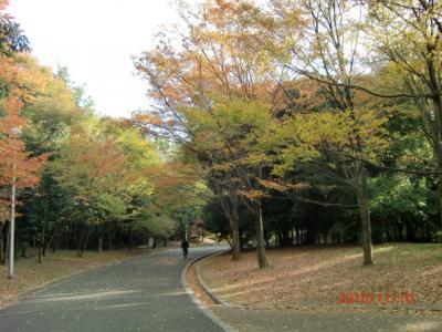 025_convert_20101113122917.jpg