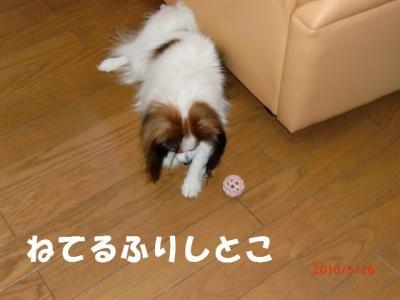 026_convert_20100529223222.jpg