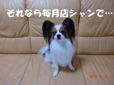 042_convert_20100614213849.jpg