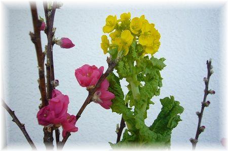 桃と菜の花kakou