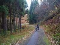 小路口林道の峠への上がり。