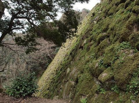石垣 290