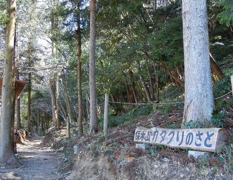 保木山 138