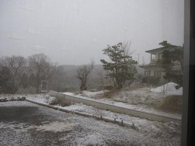 IMG_3935雪