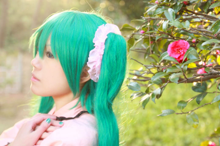 VOCALOID/初音ミク/虹色蝶々/Cosplay
