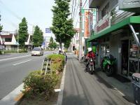 DSC05881m.jpg