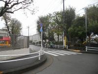 DSCN2088mm.jpg