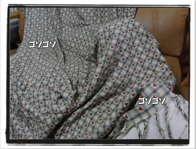 2009111701.jpg
