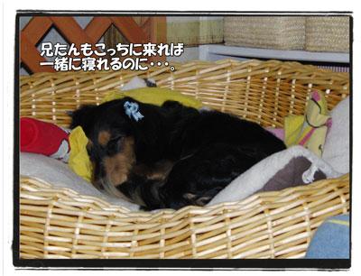2009111705.jpg