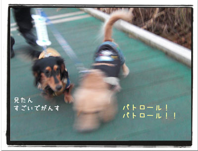2009120702.jpg