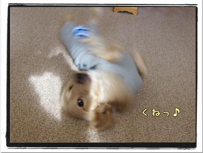 2010022403.jpg