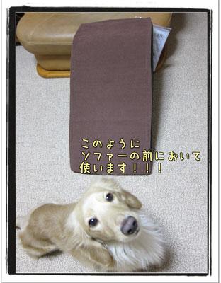 2010031904.jpg