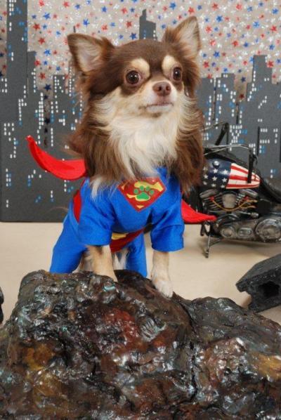 スーパーマン3_convert_20110824201806