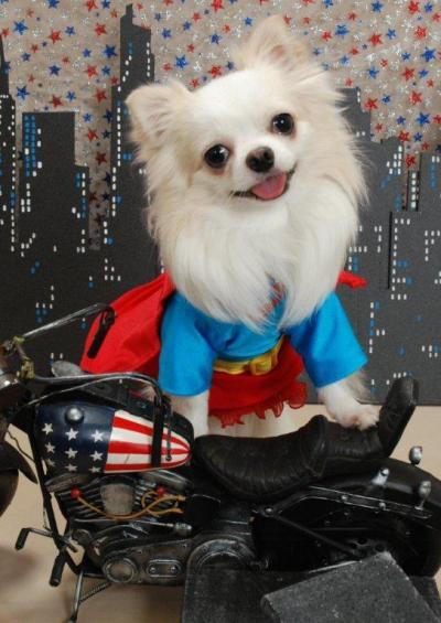 2スーパーマン_convert_20110824201740