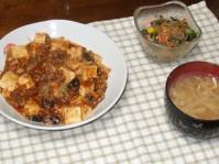 1/25 夕食 麻婆豆腐、春雨サラダ、もやしの味噌汁