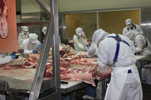 高松食肉センター内作業風景