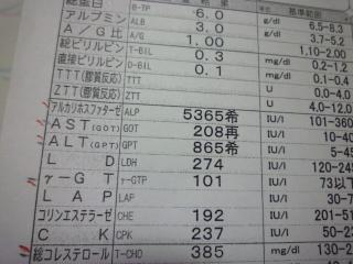 P1070483.jpg