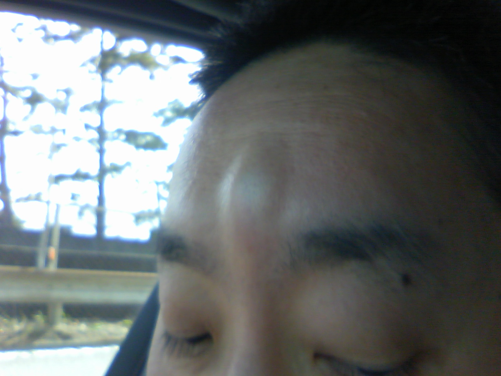 moblog_1198f7b7.jpg
