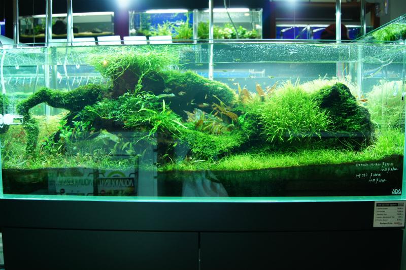 AquaRevue120cm