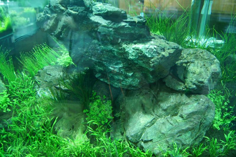 AquaRevue90cm2