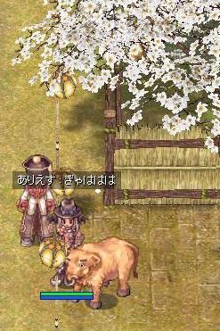 牛さんがいたw