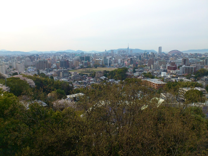 fukuoka-nohatena写真2