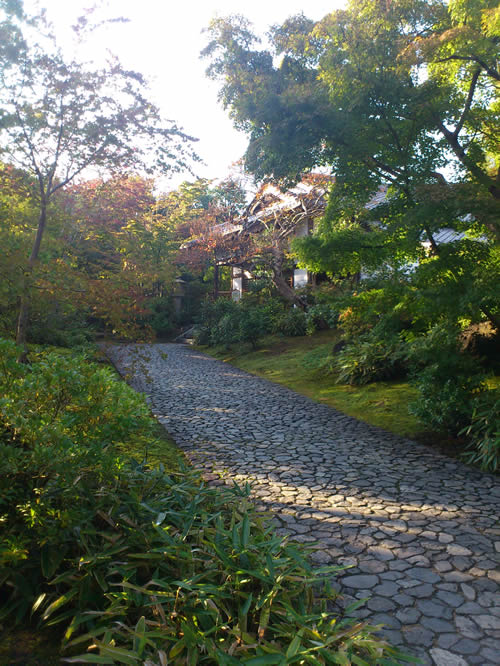 福岡 植木屋