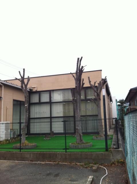 春日市 植木伐採