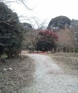 福岡 植木屋撮影