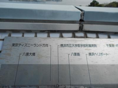 s-DSCN7560.jpg