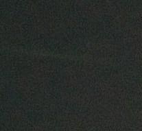 オリオン流星群の流星