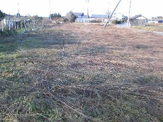 5番圃場(草刈り終了)