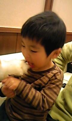 はっちゃん、綿菓子食らう