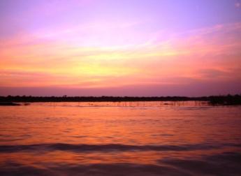 トンレサップ湖岸からの夕陽