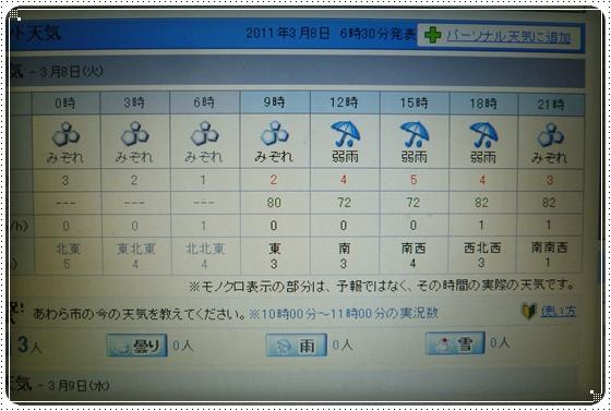 2011,3,8お散歩1