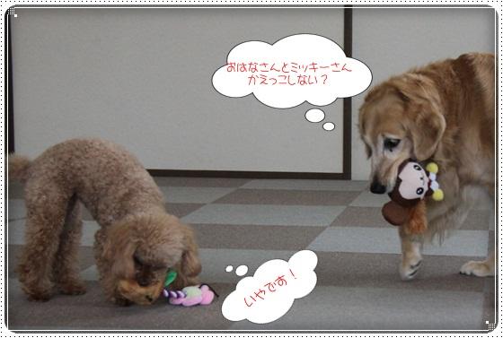 2011,3,11おもちゃ遊び5