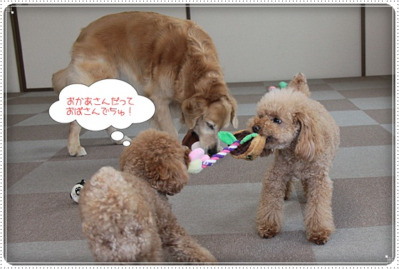 2011,3,11おもちゃ遊び8