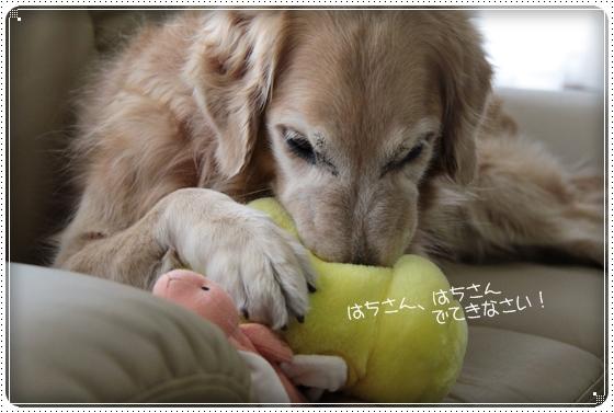 2011,3,16おもちゃ遊び4