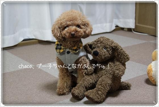 2011,3,16おもちゃ遊び11