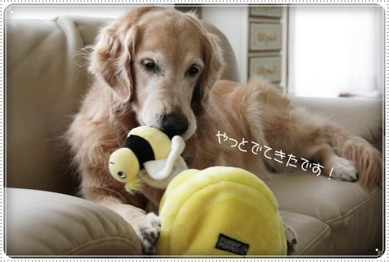 2011,3,16おもちゃ遊び8