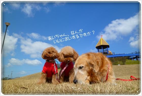2011,3,18お散歩3
