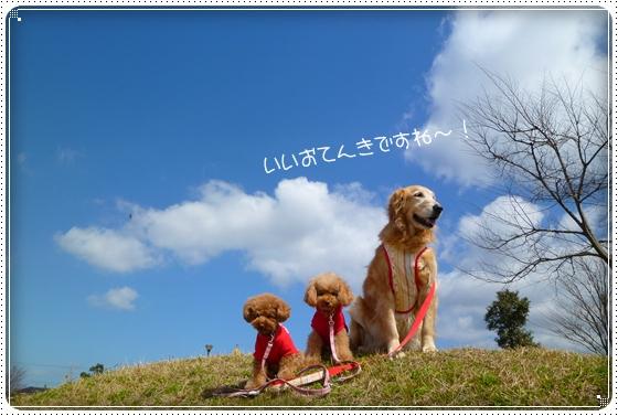 2011,3,18お散歩1