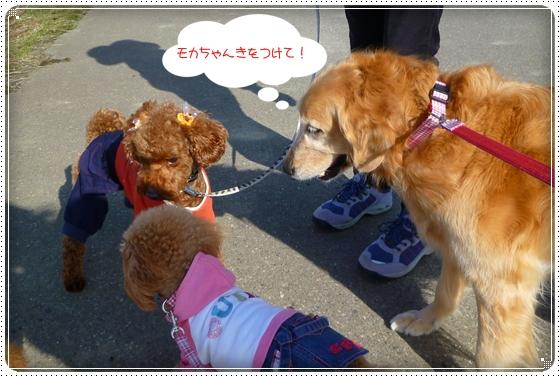 2011,3,27おもちゃ遊び8