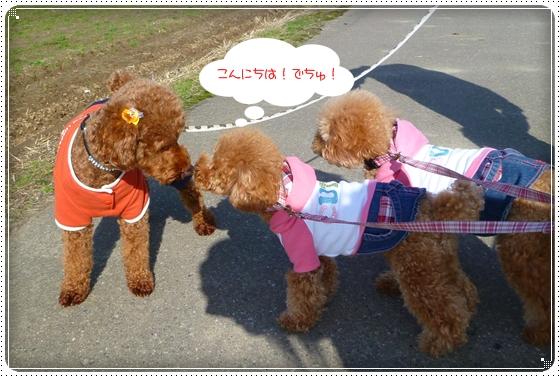 2011,3,27おもちゃ遊び7