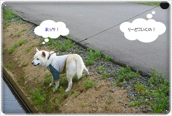 2011,4,16お散歩4
