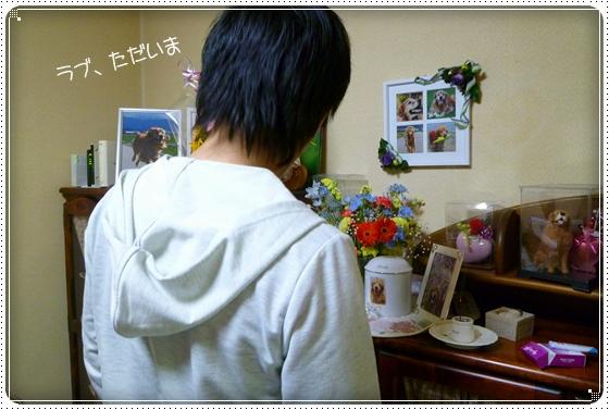 2011,4,29いらっしゃいませ!6